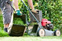 Grünpflege, Mäharbeiten Heckenschnitt