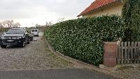 Grünanlagenpflege Aschaffenburg